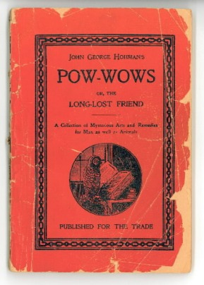 long-lost-friend-pow-wows-book